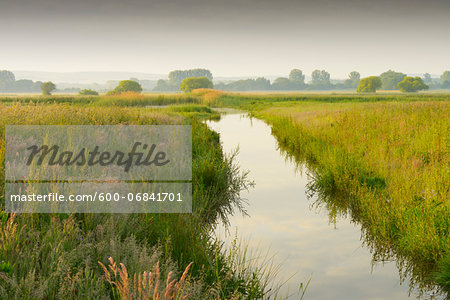 Wetland in morning light, Hesse, Germany, Europe Stock Photo - Premium Royalty-Free, Image code: 600-06841701