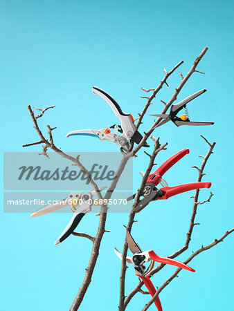 Pruners Cutting Branches while Floating in Mid Air, Studio Shot Stock Photo - Premium Royalty-Free, Image code: 600-06895070