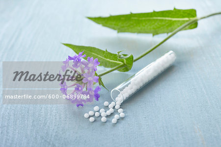 Still life of Bach flowers (Vervain) and vial of globules, Germany Stock Photo - Premium Royalty-Free, Image code: 600-06899784