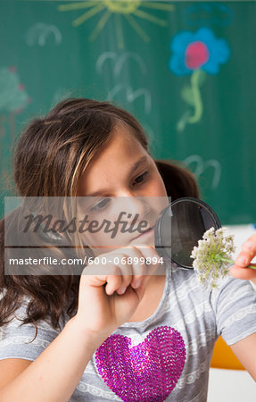 Girl in classroom examining flower with magnifying glass, Germany Stock Photo - Premium Royalty-Free, Image code: 600-06899894