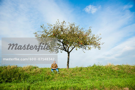 Farmer sitting on hill next to apple tree, eating apple, Germany Stock Photo - Premium Royalty-Free, Image code: 600-07148342