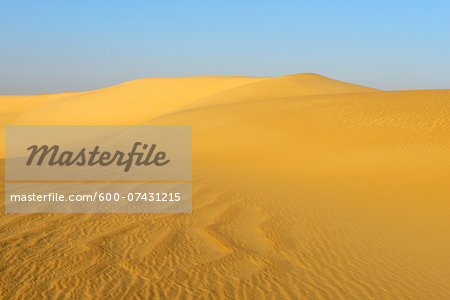 Overview of Sand Dunes, Matruh, Great Sand Sea, Libyan Desert, Sahara Desert, Egypt, North Africa, Africa Stock Photo - Premium Royalty-Free, Image code: 600-07431215