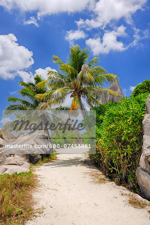 Footpath through Rocks and Palm Trees, Anse Source d´Argent, La Digue, Seychelles Stock Photo - Premium Royalty-Free, Image code: 600-07453861