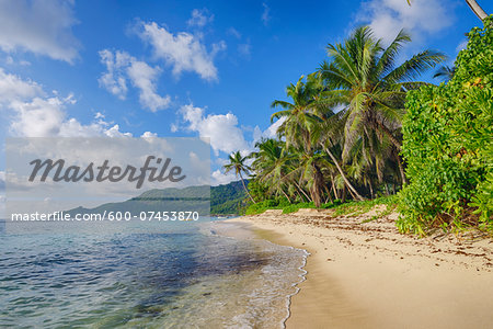 Anse Forbans Shoreline with Palm Trees, Mahe, Seychelles Stock Photo - Premium Royalty-Free, Image code: 600-07453870