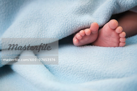 Close-up of infant's feet surrounded by blanket, studio shot Stock Photo - Premium Royalty-Free, Image code: 600-07453974