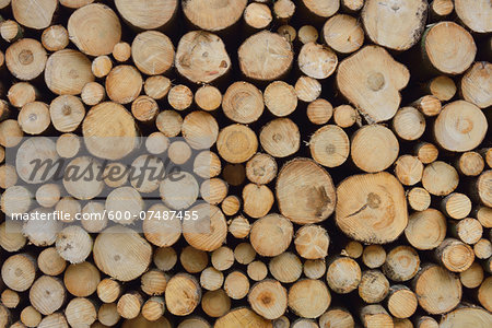 Stack of Spruce Logs, Spessart, Hesse, Germany, Europe Stock Photo - Premium Royalty-Free, Image code: 600-07487455
