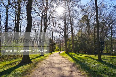 Path in early Spring, Park Schonbusch, Aschaffenburg, Spessart, Bavaria, Germany