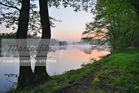 Shore with Trees at River Main in the Dawn, Spring, Dorfprozelten, Spessart, Franconia, Bavaria, Germany Stock Photo - Premium Royalty-Free, Image code: 600-07599956