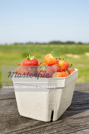 Close-up of freshly picked strawberries in box container on table outdoors, Germany Stock Photo - Premium Royalty-Free, Image code: 600-07600009
