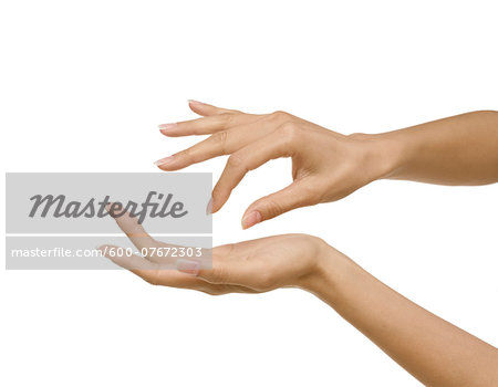 Beauty shot of woman's hands with french manicure, studio shot on white background Stock Photo - Premium Royalty-Free, Image code: 600-07672303