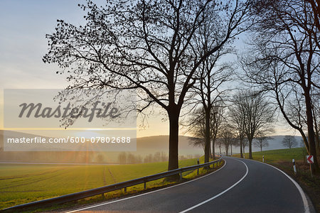 Country road with morning sun, Echte, Kalefeld, Harz, Lower Saxony, Germany Stock Photo - Premium Royalty-Free, Image code: 600-07802688