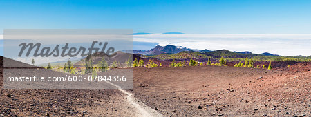 Hiking path by lava field with some Canary Island pines (Pinus canariensis), UNESCO World Heritage Site, Teide National Park, Tenerife, Canary Islands Stock Photo - Premium Royalty-Free, Image code: 600-07844356