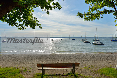 Lakeside with Bench and Tree, Herrsching am Ammersee, Lake Ammersee, Fuenfseenland, Upper Bavaria, Bavaria, Germany Stock Photo - Premium Royalty-Free, Image code: 600-07844415