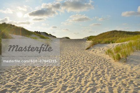 Path through the Dunes to the Beach with Sun, Summer, Norderney, East Frisia Island, North Sea, Lower Saxony, Germany Stock Photo - Premium Royalty-Free, Image code: 600-07945215