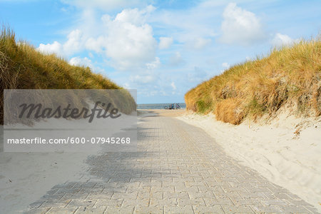 Path through the Dunes to the Beach, Summer, Norderney, East Frisia Island, North Sea, Lower Saxony, Germany Stock Photo - Premium Royalty-Free, Image code: 600-07945268