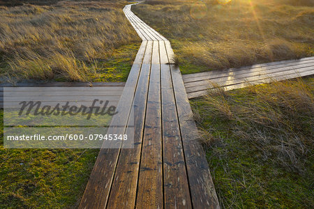 Crossing on Wooden Planks, Boardwalk Path between Dunes, Helgoland, Dune, North Sea, Island, Schleswig Holstein, Germany