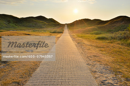Dunes Path with Sun in Summer, Norderney, East Frisia Island, North Sea, Lower Saxony, Germany