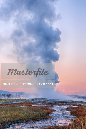 Old Faithful Geyser Steaming at Dawn, Upper Geyser Basin, Yellowstone National Park, Teton County, Wyoming, USA Stock Photo - Premium Royalty-Free, Image code: 600-08002224