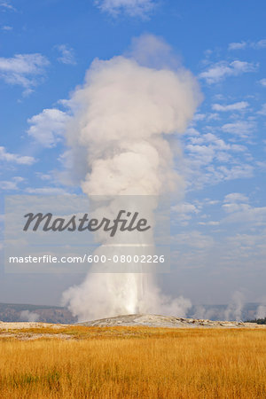 Old Faithful Geyser Erupting, Upper Geyser Basin, Yellowstone National Park, Teton County, Wyoming, USA Stock Photo - Premium Royalty-Free, Image code: 600-08002226