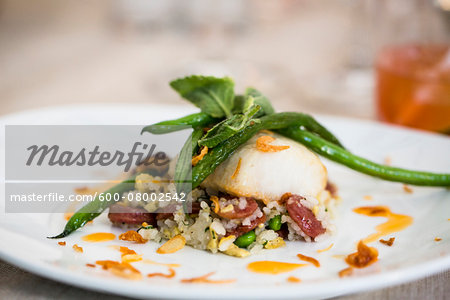Close-up of black cod fish filet with a Chinese sausage and rice side dish and green beans on a dinner plate, at an event, Canada Stock Photo - Premium Royalty-Free, Image code: 600-08002542