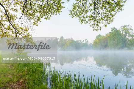Branches of Oak Tree and Lake in Early Spring, Park Schonbusch, Aschaffenburg, Lower Franconia, Bavaria, Germany Stock Photo - Premium Royalty-Free, Image code: 600-08007013
