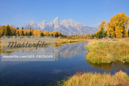Schwabacher Landing with Teton mountain range in background, autumn, Jackson Hole, Grand Teton National Park, Wyoming, USA Stock Photo - Premium Royalty-Free, Image code: 600-08026149