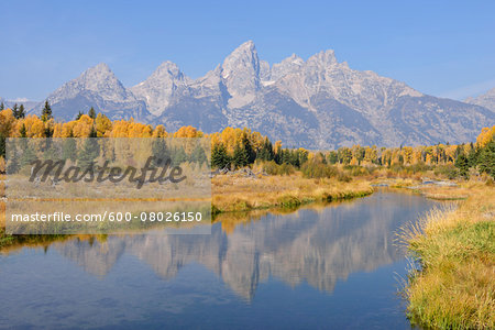 Schwabacher Landing with Teton mountain range in background, autumn, Jackson Hole, Grand Teton National Park, Wyoming, USA Stock Photo - Premium Royalty-Free, Image code: 600-08026150