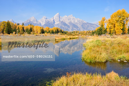 Schwabacher Landing with Teton mountain range in background, autumn, Jackson Hole, Grand Teton National Park, Wyoming, USA Stock Photo - Premium Royalty-Free, Image code: 600-08026151