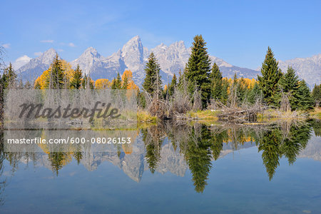 Schwabacher Landing with Teton mountain range in background, autumn, Jackson Hole, Grand Teton National Park, Wyoming, USA Stock Photo - Premium Royalty-Free, Image code: 600-08026153