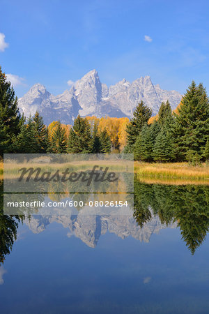 Schwabacher Landing with Teton mountain range in background, autumn, Snake River, Jackson Hole, Grand Teton National Park, Wyoming, USA Stock Photo - Premium Royalty-Free, Image code: 600-08026154