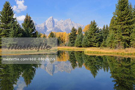 Schwabacher Landing with Teton mountain range in background, autumn, Snake River, Jackson Hole, Grand Teton National Park, Wyoming, USA Stock Photo - Premium Royalty-Free, Image code: 600-08026155