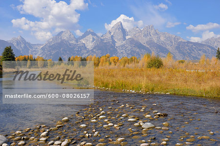 Schwabacher Landing with Teton mountain range in background, autumn, Snake River, Jackson Hole, Grand Teton National Park, Wyoming, USA Stock Photo - Premium Royalty-Free, Image code: 600-08026157