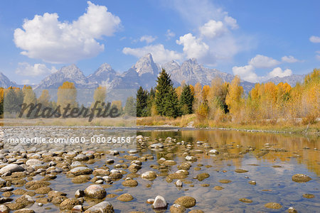 Schwabacher Landing with Teton mountain range in background, autumn, Snake River, Jackson Hole, Grand Teton National Park, Wyoming, USA Stock Photo - Premium Royalty-Free, Image code: 600-08026158