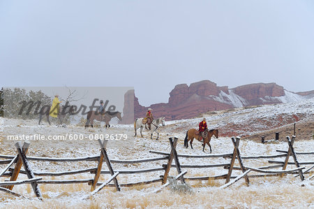 Cowboys with Two Young Cowboys Riding Horses in Snow, Rocky Mountains, Wyoming, USA Stock Photo - Premium Royalty-Free, Image code: 600-08026179