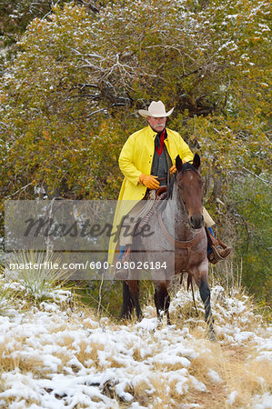 Cowboy Riding Horse in Snow, Rocky Mountains, Wyoming, USA Stock Photo - Premium Royalty-Free, Image code: 600-08026184
