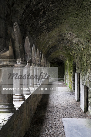 Sligo Abbey (Mainistir Shligigh), Sligo, Republic of Ireland Stock Photo - Premium Royalty-Free, Image code: 600-08102738