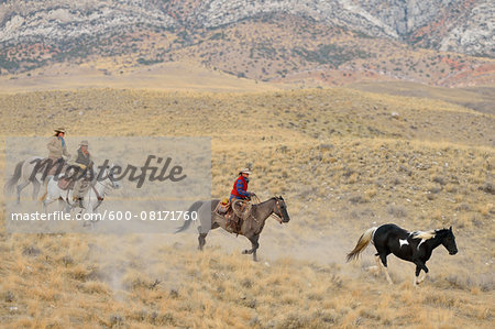 Cowboy and Cowgirls herding horse in wilderness, Rocky Mountains, Wyoming, USA Stock Photo - Premium Royalty-Free, Image code: 600-08171760