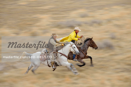 Blurred motion of cowboys on horses galloping in wilderness, Rocky Mountains, Wyoming, USA Stock Photo - Premium Royalty-Free, Image code: 600-08171773