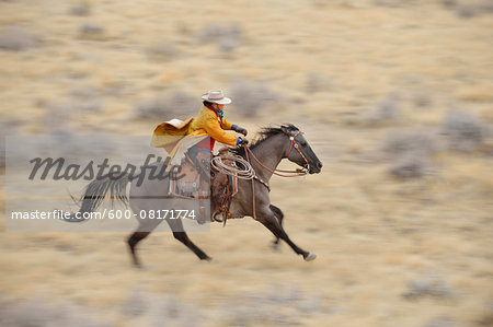 Blurred motion of cowgirl on horse galloping in wilderness, Rocky Mountains, Wyoming, USA Stock Photo - Premium Royalty-Free, Image code: 600-08171774