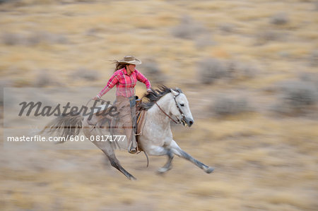 Blurred motion of cowgirl on horse galloping in wilderness, Rocky Mountains, Wyoming, USA Stock Photo - Premium Royalty-Free, Image code: 600-08171777