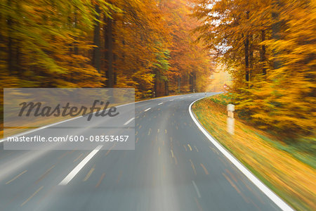 Road View from a Scenic Route in Autumn Forest, Spessart, Franconia, Bavaria, Germany Stock Photo - Premium Royalty-Free, Image code: 600-08353457