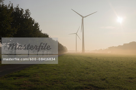 Wind Turbines in Morning Mist, Halle Westfalen, Gutersloh, North Rhine-Westphalia, Germany Stock Photo - Premium Royalty-Free, Image code: 600-08416834