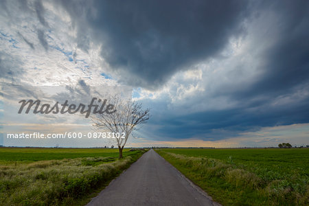 Road through Field with Storm Clouds in Tadten, Burgenland, Austria