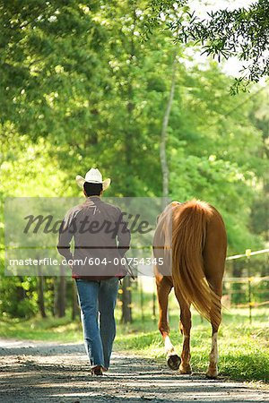 Man with horse Stock Photo - Premium Royalty-Free, Image code: 604-00754345