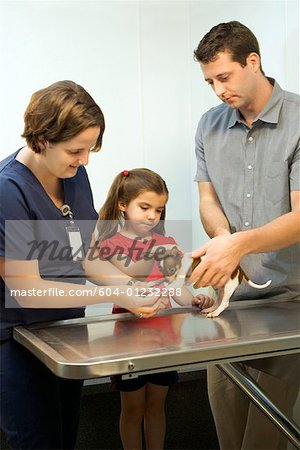 Father and daughter with dog at vet Stock Photo - Premium Royalty-Free, Image code: 604-01232288