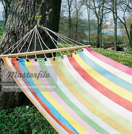 A hammock in a tree. Stock Photo - Premium Royalty-Free, Image code: 6102-03748154