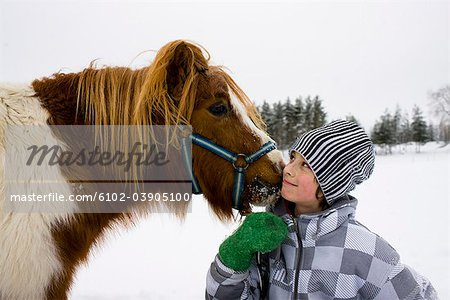 Boy with a horse, Sweden. Stock Photo - Premium Royalty-Free, Image code: 6102-03905100