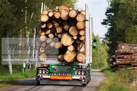 Truck carrying timber Stock Photo - Premium Royalty-Free, Image code: 6102-06336510