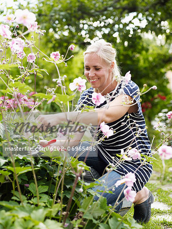 Woman gardening Stock Photo - Premium Royalty-Free, Image code: 6102-06965485
