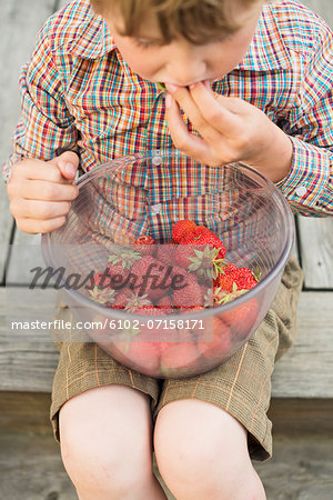 Boy eating strawberry Stock Photo - Premium Royalty-Free, Image code: 6102-07158171
